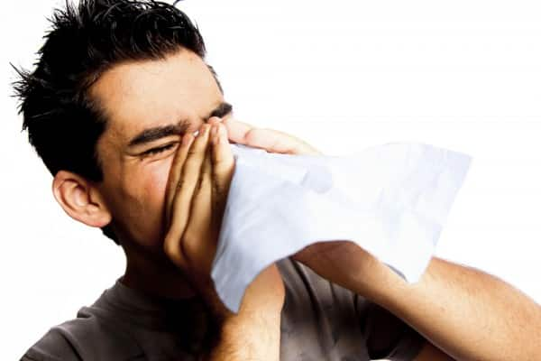 How to cure hay fever